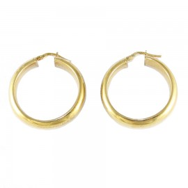 Sterling silver earrings ring gold plated 65520